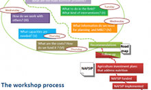 CAADP Nutrition Workshop Process
