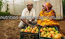 "Screenshot image of the nutrition sensitive agriculture page asking ""what is nutrition sensitive agriculture?"""
