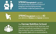 SPRING/Bangladesh Infographic