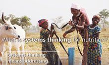 Two young girls and an adolescent girl laugh as they connect straps to buckets to put over the goat standing next to them. The overlay text says: What is systems thinking for nutrition? Systems thinking means addressing nutrition in all areas of life: home, work, school, markets, and social circles.