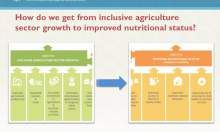 Maximizing Nutrition Impact through Feed the Future