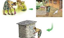 A graphic representation of a woman cleaning a yard of animal feces, disposing of the feces responsibly, and washing her hands with a tippy tap.