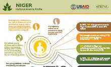 Niger anemia profile