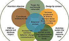 Key Guiding Principles to Improve Nutrition Impact through Agriculture, adopted from (FAO, 2013a)