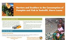 Barriers and Enablers to the Consumption of Pumpkin and Fish in Tonkolili, Sierra Leone