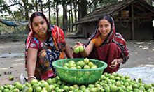 Two women kneel in front of a large pile of vegetables. There is a green bowl on top of the pile which is also full of vegetables. Both women smile proudly.