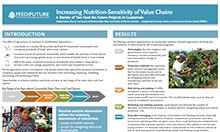 Increasing Nutrition Sensitivity of Value Chains: A Review of Two Feed the Future Projects in Guatemala