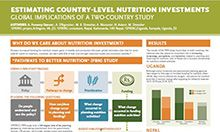 Estimating Country-Level Nutrition Investments: Global Implications of a Two-Country Study