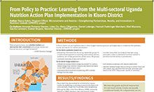 From Policy to Practice: Learning from the Multi-sectoral Uganda Nutrition Action Plan Implementation in Kisoro District