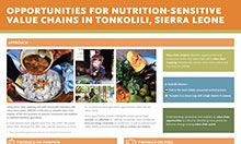 Opportunities for Nutrition-Sensitive Value Chains in Tonkolili, Sierra Leone