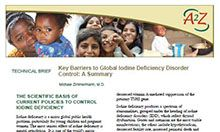 Technical Brief: Key Barriers to Global Iodine Deficiency Disorder Control: A Summary