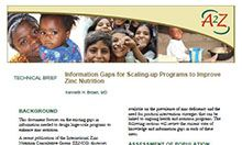 Technical Brief: Information Gaps for Scaling-up Programs to Improve Zinc Nutrition