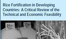 Rice Fortification in Developing Countries: A Critical Review of the Technical and Economic Feasibility, April 2008
