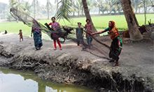 Farmer nutrition school participants practice throwing a net into the fish pond in Babuganj. The fish they catch will provide critical nutrients to their families. Photo: SPRING/Bangladesh