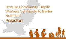 Thumbnail of Pakistan tool