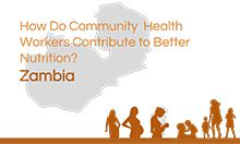 Thumbnail of Zambia tool