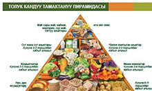 An image of the food pyramid