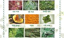 Section of the poster depicting nutritious plants