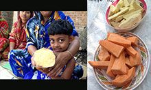 One NRVCC studied in Bangladesh was the orange-flesh sweet potato, which were introduced as a nutritious food source by a Feed the Future project.