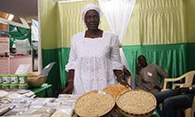 SPRING/Senegal partner, FEPROMAS, displays grains of highly nutritious Obatampa maize.