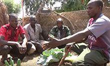 Four men kneel in a home garden full of vegetables. The man whose garden it is gestures towards the crops.