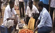 men with produce