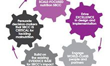 SBCC strategic agenda