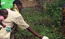 Integrated Nutrition and Agriculture Needs Assessment for Sierra Leone