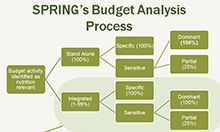 SPRING budget analysis graphic
