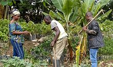 Photo of a woman and two men working with farming tools in front of trees and plant beds.