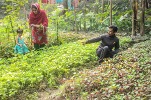 Photo of Mohammad, his wife and a child working in their garden